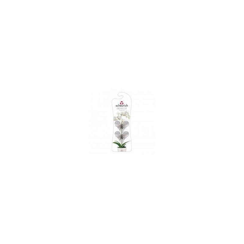 orchideen schmetterlingclip 0 99 hydrokultur. Black Bedroom Furniture Sets. Home Design Ideas